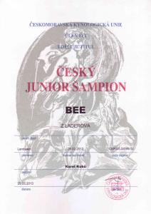 BEE-CJS